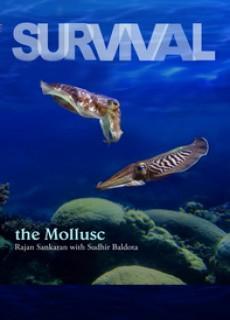 survival-the-mollusc