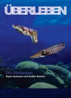 uberleben-die-mollusken